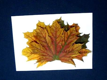 аппликация ежик из кленовых листьев