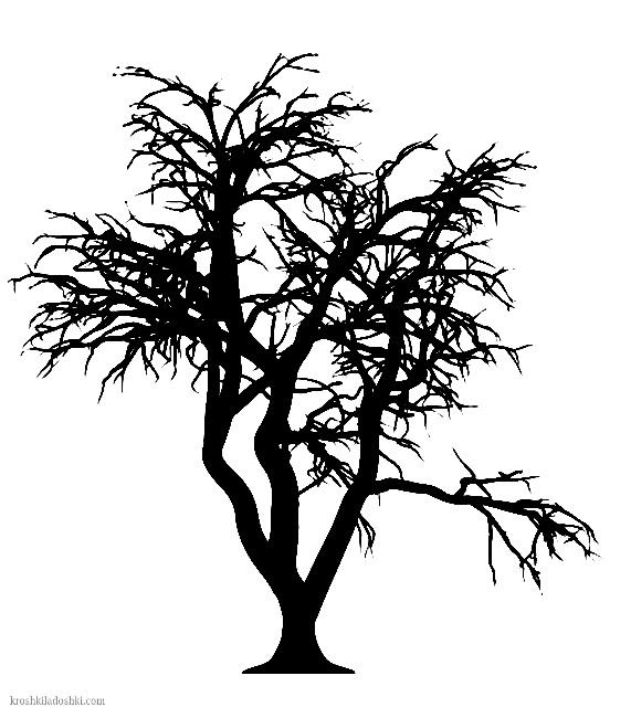 дерево с пышной кроной распечатать