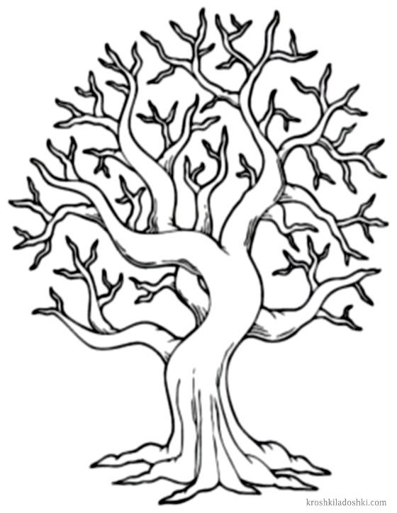 шаблоны деревьев скачать