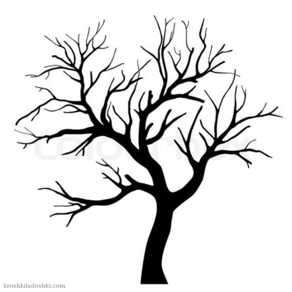 шаблоны деревьев без листьев