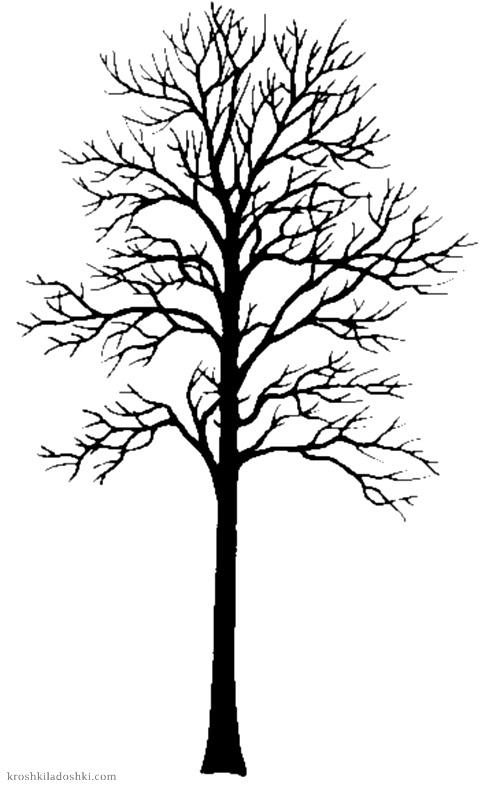 трафареты деревьев распечатать