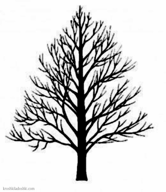 дерево для аппликаций