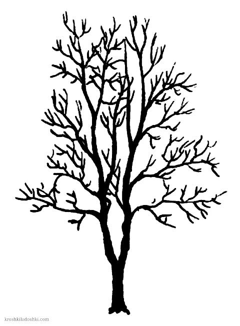 деревья без листьев скачать