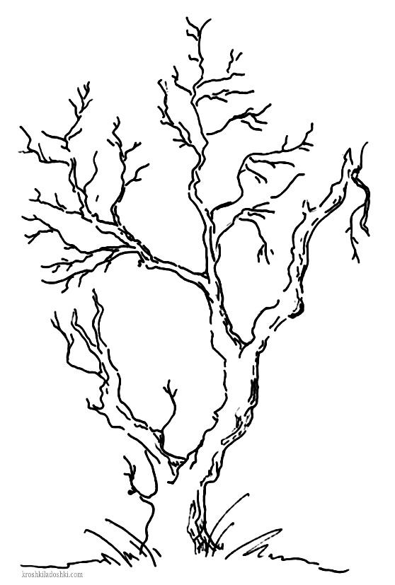 рисунок дерева шаблон