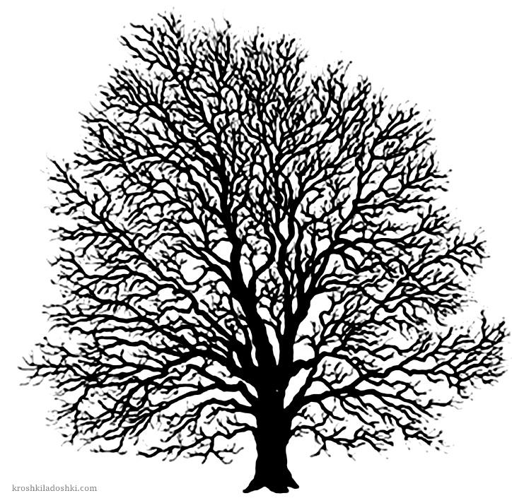 трафареты деревьев