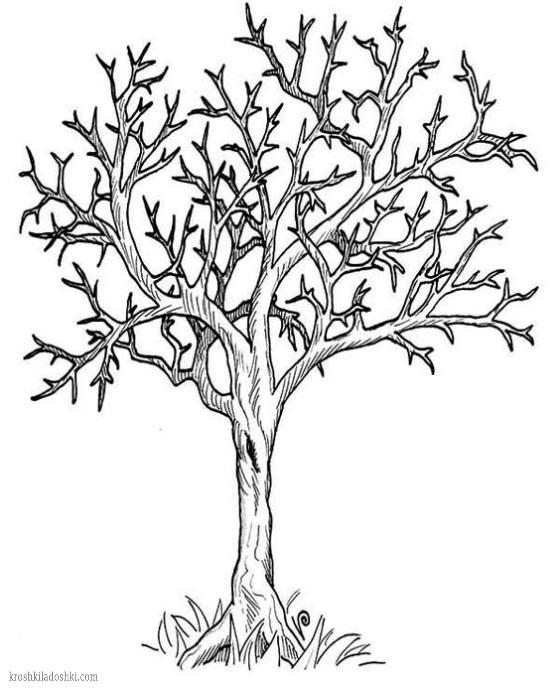 трафареты деревьев скачать