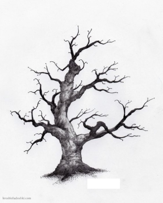рисунок дерева на листе А4