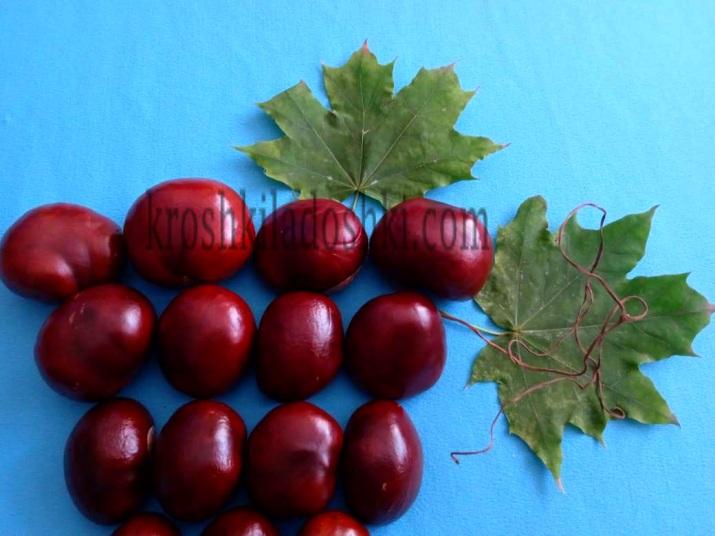 аппликация виноград