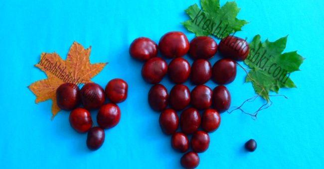 поделка виноград из каштанов